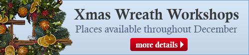 Xmas wreath workshops