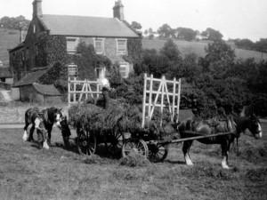 Farming at Horsleygate Hall