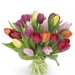 mixed-tulip-hand-tied-bouquet